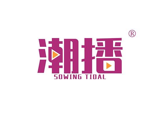 潮播 SOWING TIDAL商标